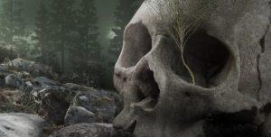 Serienkiller Part III: Die Mörderinnen von Nagyrev