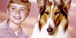 Superstar Lassie: Hund der Wunder, Held der Träumer